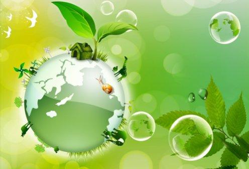 «Экологическое образование