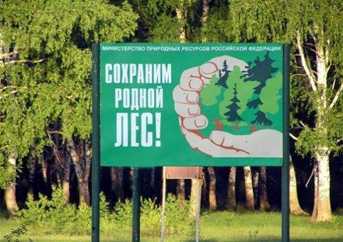 охрана лесных ресурсов от