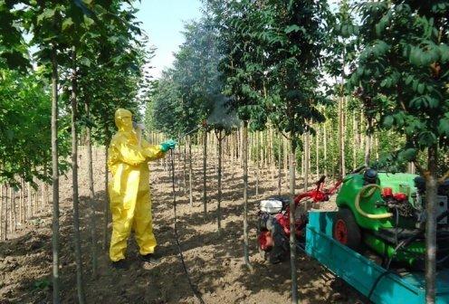 Пестициды: опасность