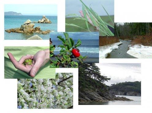 ресурсы Земли в целом
